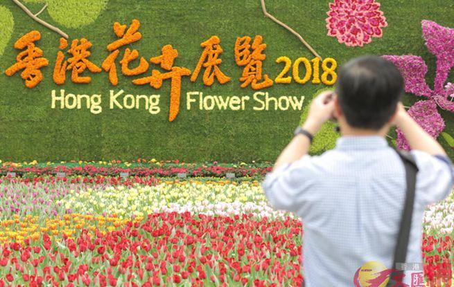 """2018香港花卉展览带你走进""""花花世界"""""""