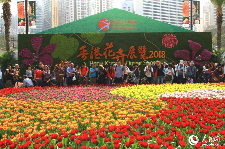 2018香港花卉展览3月16日在维多利亚公园开幕(摄影:辜雨晴)