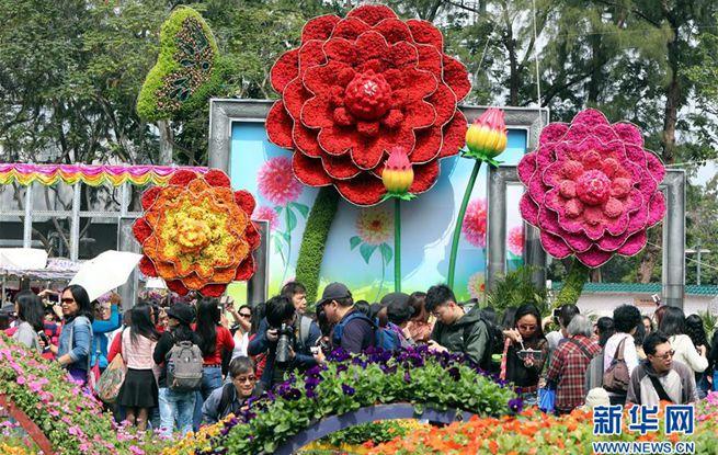 香港:皇冠开户网,又到一年赏花时