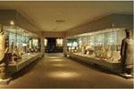 澳门的博物馆:澳门博物馆