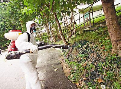 香港爆发多宗本地登革热个案 全港灭蚊免成风
