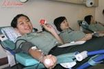 驻港部队女兵无偿献血